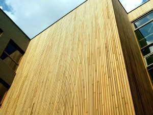 elewacja-drewniana-galeria-vitis-032